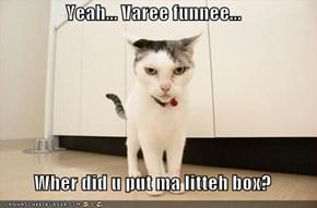 Yeah... Varee funnee...  Wher did u put ma litteh box?