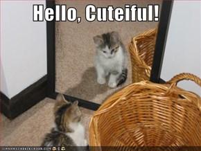 Hello, Cuteiful!
