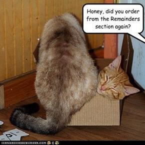 Honey, did you order from the Remainders section again?