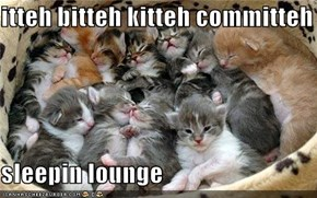 itteh bitteh kitteh committeh  sleepin lounge