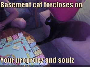 Basement cat forcloses on  Your proprtiez and soulz