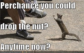 Perchance you could drop the nut? Anytime now?