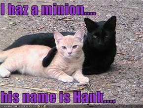 I haz a minion....  his name is Hank....