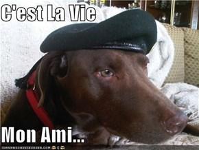 C'est La Vie  Mon Ami...