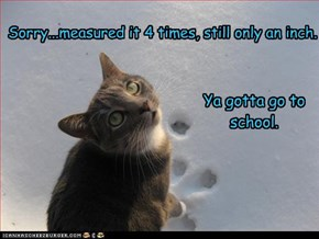 No Snow Day for you!