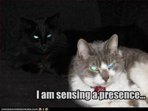 I am sensing a presence...