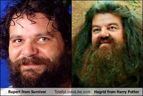 Rupert from Survivor Totally Looks Like Hagrid from Harry Potter