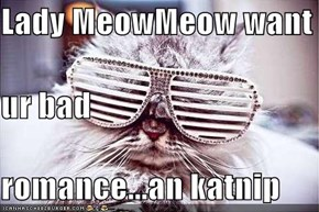 Lady MeowMeow want  ur bad  romance...an katnip