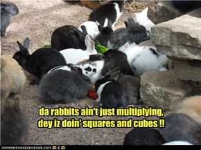 da rabbits ain't just multiplying, dey iz doin' squares and cubes !!