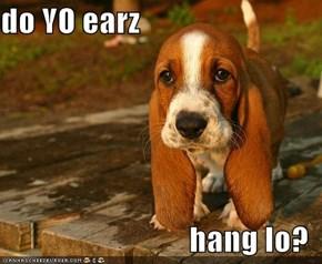 do YO earz  hang lo?