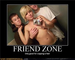 MP/633661430348615878-FriendZone.jpg
