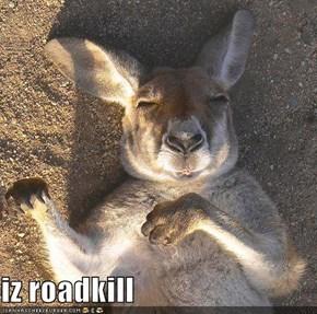 iz roadkill
