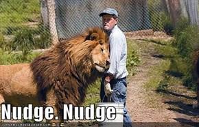 Nudge. Nudge