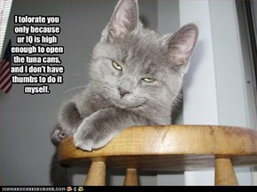 I tolorate you only because ur IQ is high enough to open the tuna cans, and I don't have thumbs to do it myself.