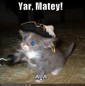 Yar, Matey!  ^-^