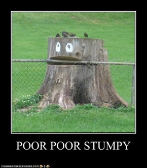 POOR POOR STUMPY