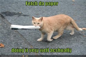 Fetch da paper  doing it very well acshually