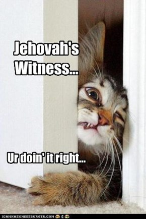 Jehovah's Witness...