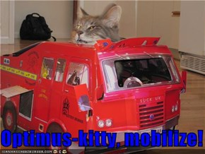 Optimus-kitty, mobilize!