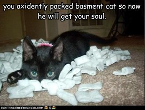 you axidently packed basment cat so now he will get your soul.