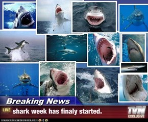 Breaking News - shark week has finaly started.