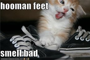 hooman feet  smell bad