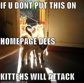 IF U DONT PUT THIS ON HOMEPAGE DEES  KITTEHS WILL ATTACK