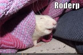Roderp