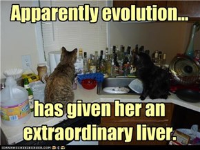 Apparently evolution...     has given her an extraordinary liver.