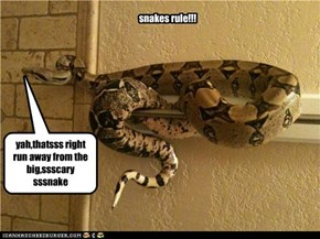 snakes rule!!!
