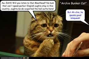 """""""Archie Bunker Cat"""""""