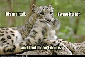 Dis mai tail.
