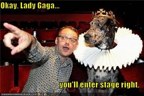 Okay, Lady Gaga...  you'll enter stage right.