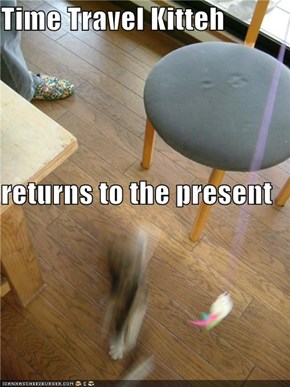Time Travel Kitteh returns to the present