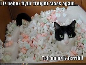 I iz neber flyin' freight class again...  Teh nomz iz terribl!