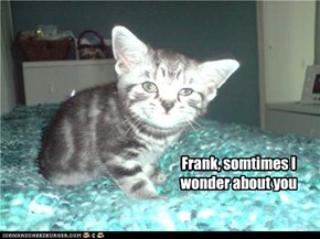Frank, somtimes I wonder about you
