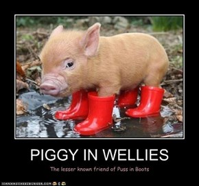 PIGGY IN WELLIES
