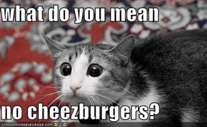 what do you mean  no cheezburgers?