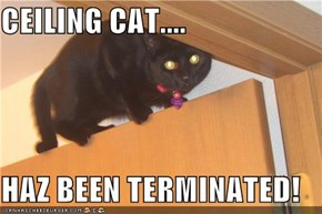 CEILING CAT....  HAZ BEEN TERMINATED!
