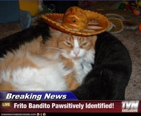 Breaking News -  Frito Bandito Pawsitively Identified!