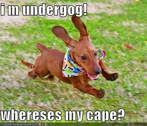i m undergog!  whereses my cape?