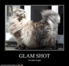 GLAM SHOT