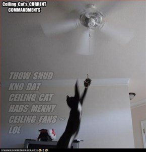 Ceiling  Cat's  CURRENT  COMMANDMENTS