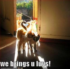 we brings u luvs!