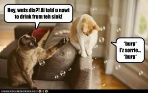 Bubble cat emits bubbles