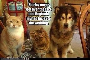 Shirley never got over the fact that Reginald invited his ex to the wedding.