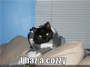 I haz a cozzy