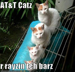 AT&T Catz  r rayzin teh barz