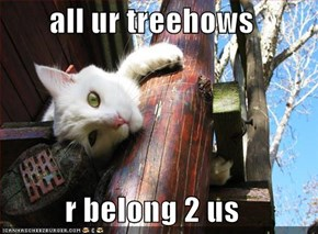 all ur treehows  r belong 2 us