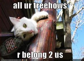 all ur treehows  r belong 2 us